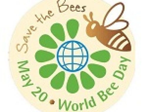 """Happy World Bee Day"""